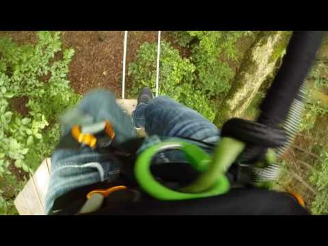 Go Ape Zip Line & Treetop Adventure - Raleigh, NC