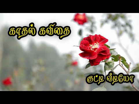 🌹💜❤ Kaadhal Kavithai in tamil {Love Quotes Tamil} #071 🌹💜❤