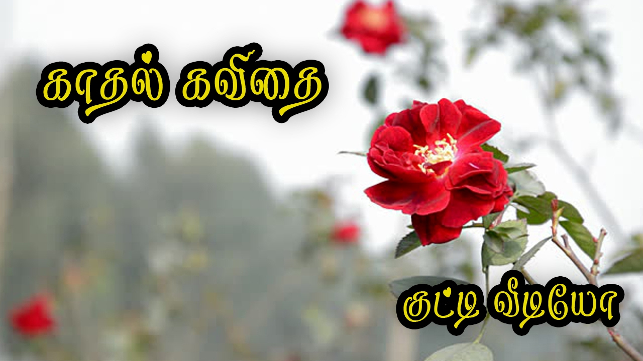 kaadhal kavithai in tamil love quotes tamil 071
