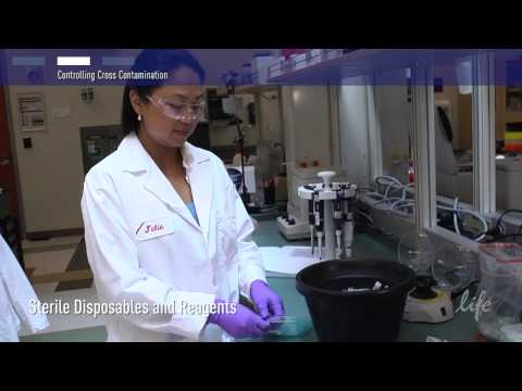 How To Control Contamination In PCR Lab