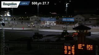 Vidéo de la course PMU PRIX SCARLET TURGO