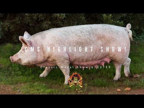 The CMS Highlight Show From 6/22/19