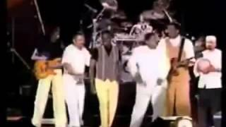 Verdine White-Earth, Wind & Fire   Live '95 & '96 Sinbad's Summer Jam 70's Soul Music Festival