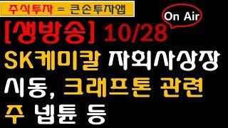 [주식] 10월28일 SK케미칼 자회사 상장 시동, O…