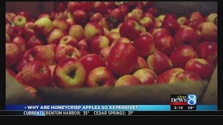 Why Honeycrisp Apples Are So Expensive