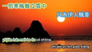 一剪梅 Yi jian mei - karaoke