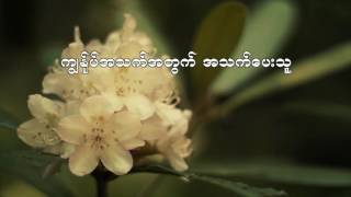 Kyay Suu Taw Mah Ta Bar - ေက်းဇူးေတာ္မွတပါး (Instrumental) Myanmar Gospel Song