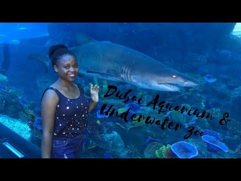Dubai Aquarium (Sharks &Crocodiles) and  Underwater Zoo 2020