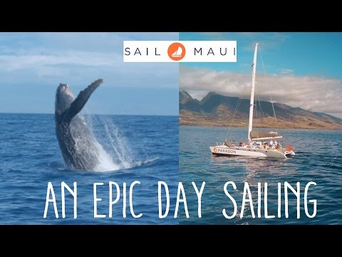 The Best Sailing Experience In Maui - Hawaii Travel Vlog