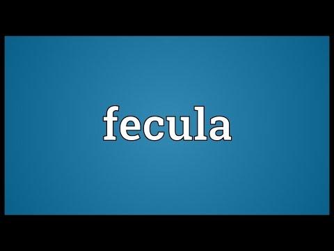 Header of fecula