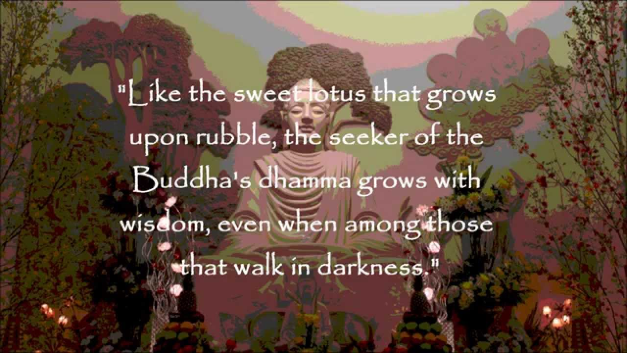 Buddha Life Quotes Life Happiness  Buddha Quotes Buddhist Beliefs  Youtube