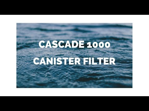 Cascade 1000 Canister Filter Setup And Install | Turtle Tank Filtration