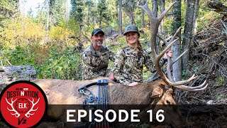 Jessi's First Elk: Bowhunting with Pink Arrows! (Destination Elk V2: Episode 16)