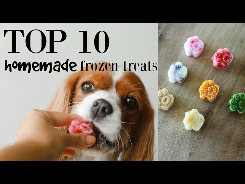 top-10-homemade-frozen-treats-for-dogs