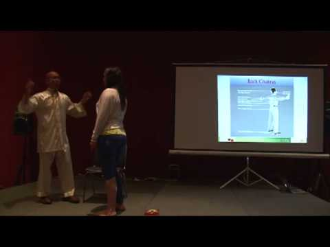 TYC 2013 - Yoga of Synthesis: Yoga of Power, Love and Light