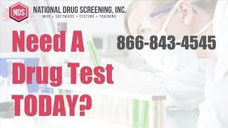 Drug Screening Test US Locations   Same Day Drug Test