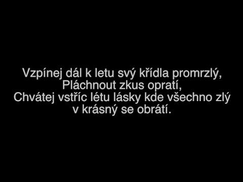 Summer All Stars - Léto lásky ft. Slza (Text)