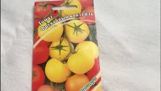 Высоко декоративные, коктейльные томаты. Томат Фруктовый Коктейль, микс