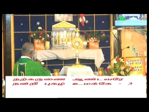 13-02-2018 TUESDAY MORNING MASS LIVE