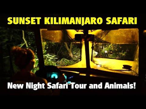 New Sunset Kilimanjaro Safaris Nighttime Safari | Disney's Animal Kingdom