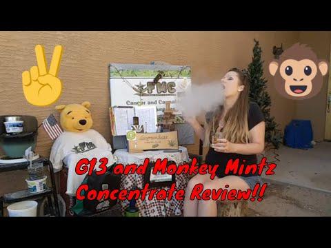 Baixar The Mintz Review - Download The Mintz Review | DL Músicas