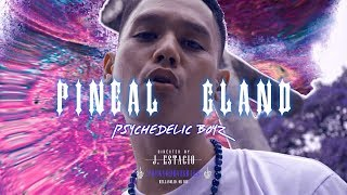 PSYCHEDELIC BOYZ - PINEAL GLAND 🧠