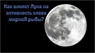 Влияние фаз Луны на клев рыбы. Всё о рыбалке на Днепре