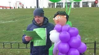 """""""Зеленая коробка"""" запустила в воздух куклу губернатора Орловой?"""