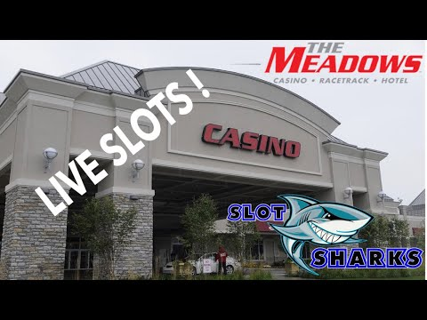The Meadows Racetrack Live Video