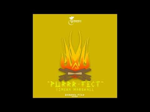 TIMEKA MARSHALL-PURRRFECT (GUYANA CARNIVAL 2018)