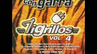 Los Tigrillos-Mueve Tu Cintura