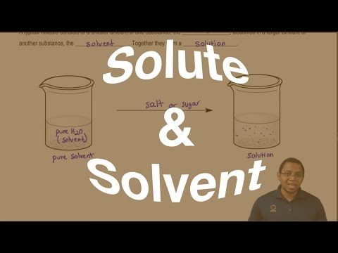 The Difference Between a Solute and Solvent