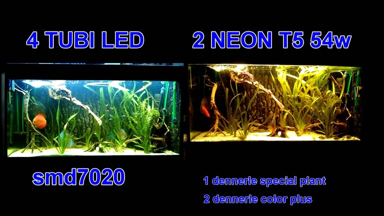TUBI LED Vs NEON - YouTube