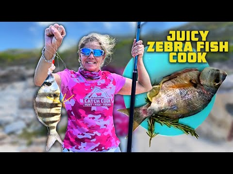 Angling With Kids [Small Sharks And Bottom Fish, Zebrafish] Catch Cook
