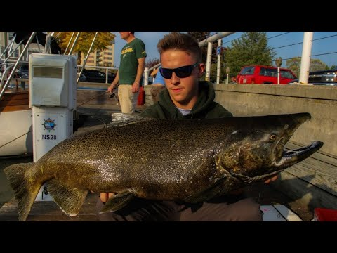 INSANE SKEIN FISHING For KING SALMON In Port Washington Harbor (CRAZY ACTION!)