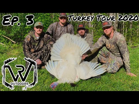 Public Land Turkey Hunting White Tom: The Ghost Goes Down