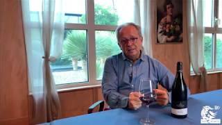 L'Angolo del Sommelier - St. Pauls Pinot Noir Luzia