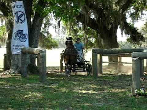 Olof Larson Live Oak International Single Horse