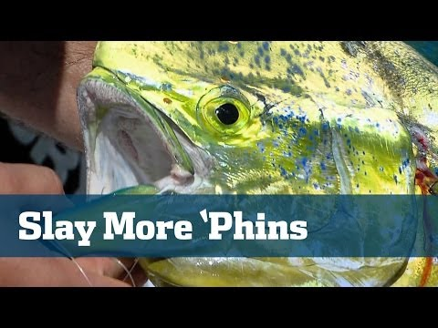 Dolphin Tackle Tips Every Angler Must Know - Florida Sport Fishing TV