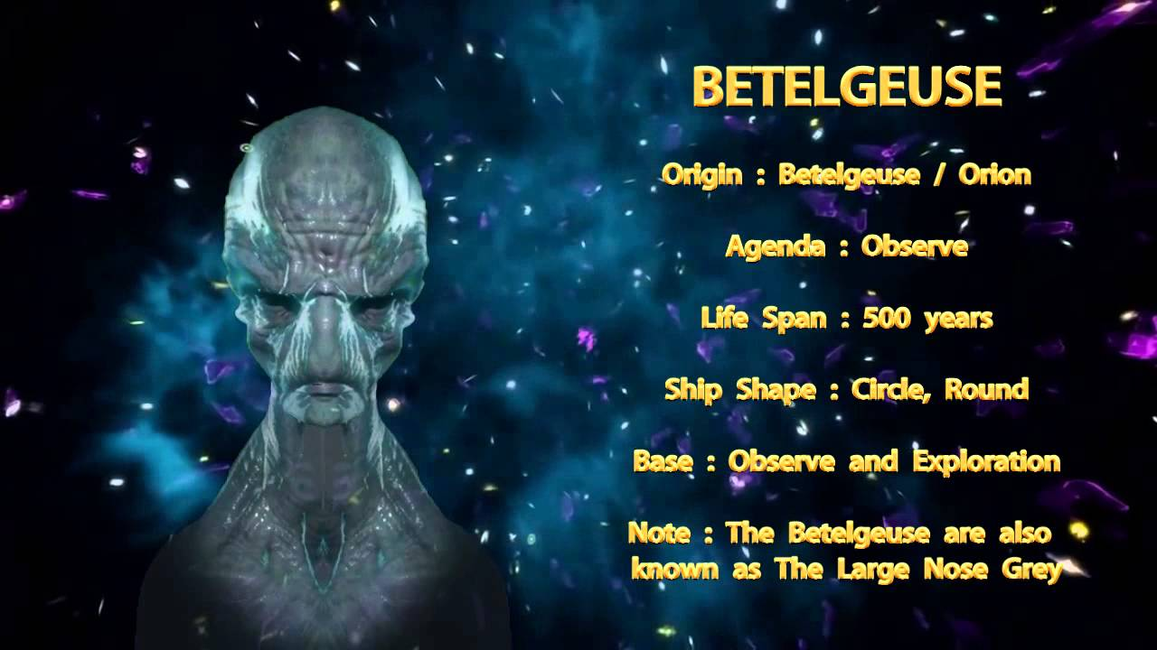Aliens  8  The Anunnaki  YouTube