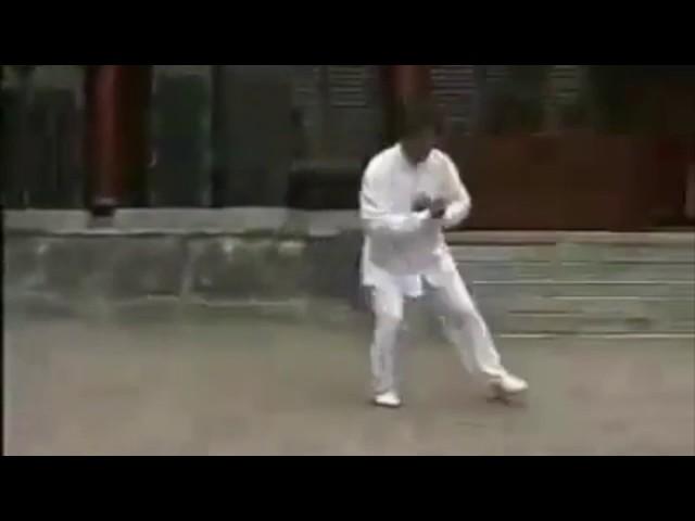 Chen Boxiang  - Tai Chi style Chen Xiaojia Erlu  [陈氏太极拳小架 Taijiquan style Chen Xiaojia]