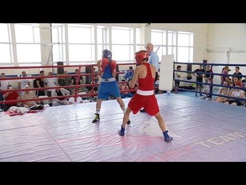 В Тамбове на турнире по боксу «Державинский ринг» провели 13 боев