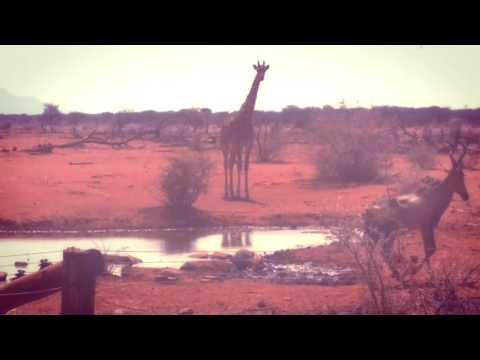 Namibia. ..all pics click by Lata Kanuga