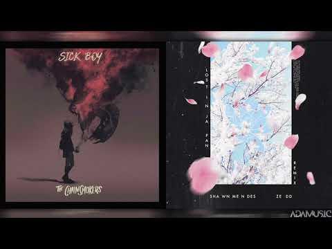Lost In Hope - Mashup of Shawn MendesThe ChainsmokersZeddWinona Oak