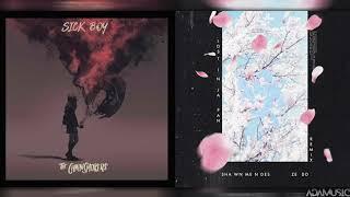 "Baixar ""Lost In Hope"" - Mashup of Shawn Mendes/The Chainsmokers/Zedd/Winona Oak"