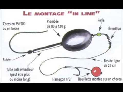Explication comment p che la carpe quelle canne - Armoire pour canne a peche ...