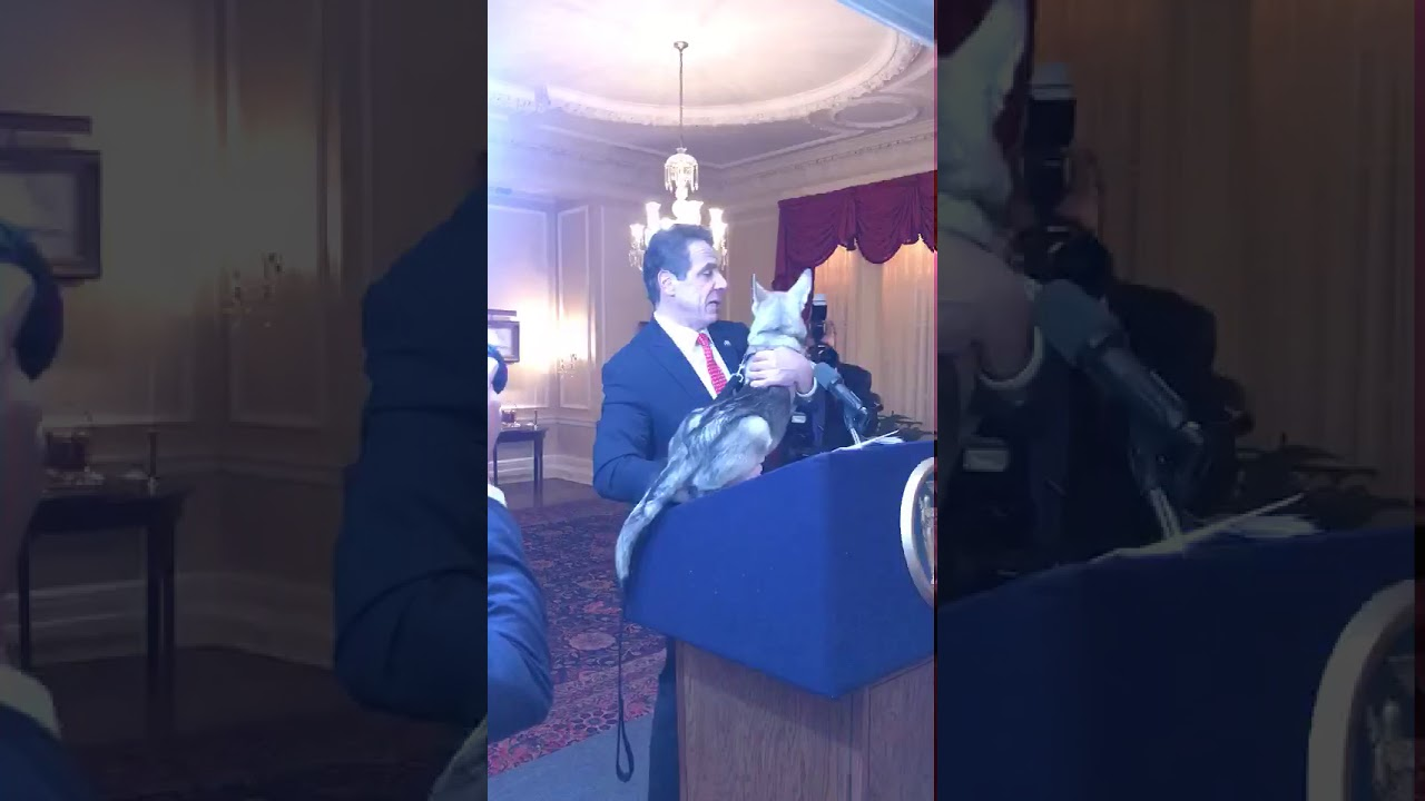 Governor Cuomo Introduces Captain New York S First Dog Youtube
