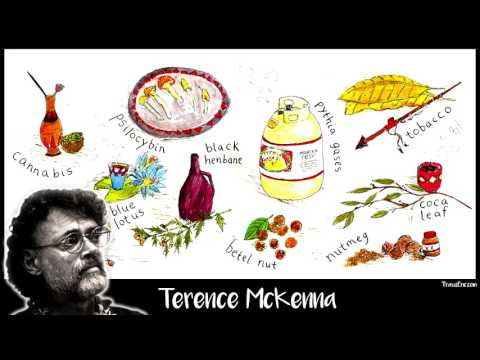 Terence McKenna  Proper way to think of Hallucinogens