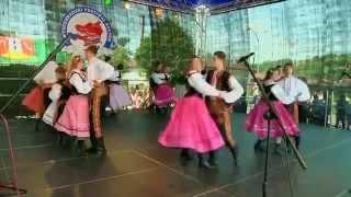 Polka z nogi Piecuchy Nawojowa