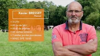 Lutte algues vertes - systèmes herbagers - Baie 2027